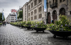 Beautiful paved street Stock Images
