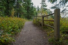 Beautiful paved trail with wooden fence at overlook on the North Shore of Lake Superior stock photo
