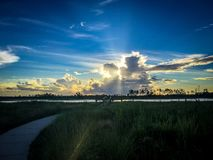 beautiful and peaceful sunset in the marshes of a swamp stock photography