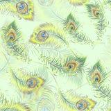 Beautiful  peacock feathers seamless pattern Stock Photography