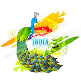 Beautiful peacock for Indian Republic Day celebration. Stock Photography