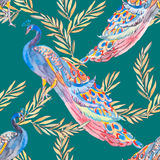 Beautiful peacock pattern. . Peacocks and plants. Royalty Free Stock Photography