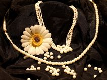 Beautiful Pearl necklaces in black background Royalty Free Stock Photo