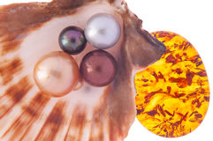 Beautiful pearl in the shell with amber Royalty Free Stock Photo