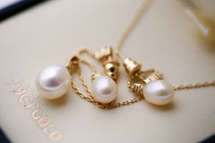 Beautiful pearls of bride`s jewelry Stock Photos