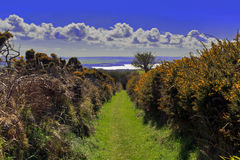The beautiful Pembrokeshire Coastal Path Royalty Free Stock Photos