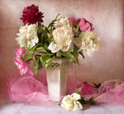 Beautiful peonies Royalty Free Stock Image