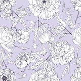 Beautiful peonies seamless pattern. Blossom flowers, buds and leaves. Black and white vector illustration. Beautiful peonies seamless pattern. Blossom flowers Royalty Free Stock Photos