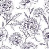 Beautiful peonies seamless pattern. Hand drawn blossom flowers, buds and leaves. Black and white vector illustration. Royalty Free Stock Photography