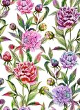 Beautiful peony flowers with buds and leaves in straight lines on white background. Seamless floral pattern. Watercolor painting. Hand drawn illustration Stock Images