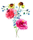 Beautiful Peony and gerber flowers Stock Images