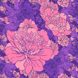 Beautiful peony seamless pattern design. illustration. Royalty Free Stock Image