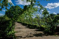 Beautiful pergola in the garden Stock Images