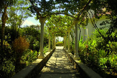 Beautiful pergola passage in the summer garden Royalty Free Stock Photos