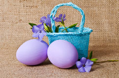 Beautiful periwinkle in the basket and easter eggs Stock Image