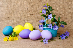 Beautiful periwinkle and easter eggs Royalty Free Stock Images