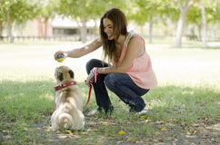 Beautiful pet lover and her dog. Young beautiful woman and her dog having fun and playing with a ball at a park stock photos