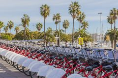 Bicycles parked in a row in the port of Barcelona stock photography