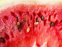 Beautiful photo  with  Fresh sliced watermelon  close-up. Natural background Stock Photos