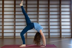 Beautiful photo of young lady standing in bridge exercise while practicing yoga poses on yoga mat royalty free stock image