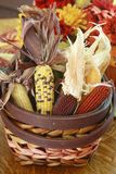 Autumn Basket full of Indian Corn. Beautiful photograph of fall colors. The main focus being an Autumn basket full of Indian corn. Could be a centerpiece on a stock image
