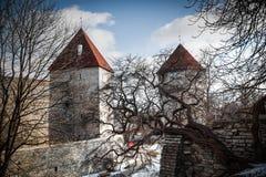 Beautiful  photos of Tallinn Stock Photo