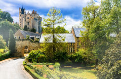 Beautiful pictorial Loire valley - view with Chateau de Montreui Royalty Free Stock Images