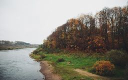 Autumn shore with trees and river. Beautiful picture with autumnal shore with trees, colorful foliage and river Royalty Free Stock Photos