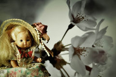 Beautiful picture. Doll, little girl, long hair, straw hat on his head, tail, branch apricots in the background,the decrease in contrast, bright dress Stock Photography