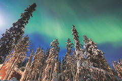 Beautiful picture of massive multicolored green vibrant Aurora Borealis, Northern Lights Royalty Free Stock Photography