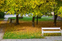 Small park covered with autumn leaves Royalty Free Stock Photos