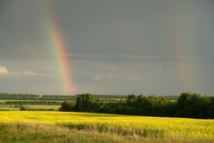 Double rainbow over the forest and field stock images