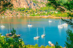 Beautiful picturesque bay of the sea Royalty Free Stock Photography