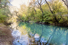 Beautiful picturesque  landscape of green river and trees in the mountain Stock Image
