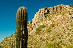 Piestewa / Squaw Peak Stock Image