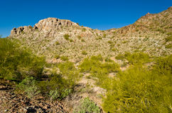 Piestewa / Squaw Peak Royalty Free Stock Photos