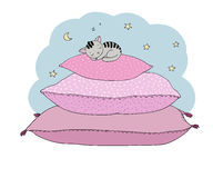 Beautiful pillows and cute cat Royalty Free Stock Photo