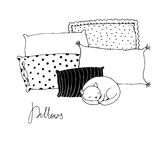 Beautiful pillows and cute cat on a white background. Royalty Free Stock Photography