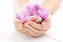 Pinc manicure with chrysanthemum flowers. spa Royalty Free Stock Photography