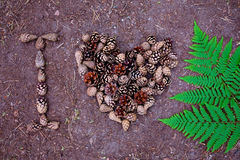 Beautiful pine cones and fern are laid out on the ground. Inscription - I love nature Stock Images