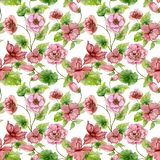 Beautiful pink begonia flowers with leaves on white background. Seamless floral pattern. Hand painted watercolor illustration. Wallpaper, textile design stock illustration