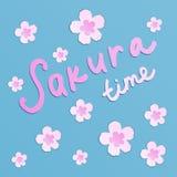 Beautiful pink blooming sakura flowers on blue background stock illustration