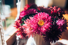 Beautiful pink bouquet of asters by the window. Light home decoration with flowers asters. Copy space. royalty free stock photography