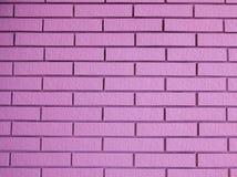Beautiful pink bricks. The afternoon of my beautiful pink brick Royalty Free Stock Image
