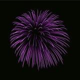 Beautiful pink firework. Bright firework isolated on black background. Light purple decoration firework for Christmas. Beautiful pink firework. Bright firework Stock Image