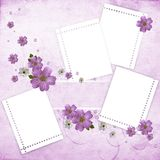 Beautiful pink floral background Royalty Free Stock Photo