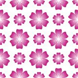 Beautiful pink flower. Seamless floral pattern. Vector Royalty Free Stock Photo