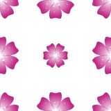 Beautiful pink flower. Seamless floral pattern. Vector Stock Photography