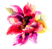 Beautiful Pink flower. Watercolor painting Royalty Free Stock Images