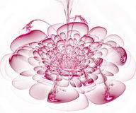 Beautiful pink flower on white background. Computer generated gr Stock Images